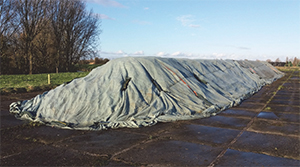 Experiences with forced ventilation of sugar beet storage clamps in The Netherlands