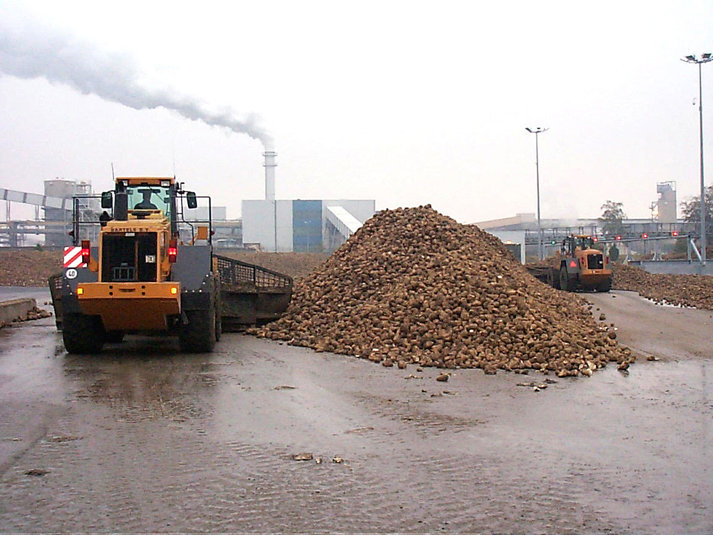 Suiker/ suikerproductie