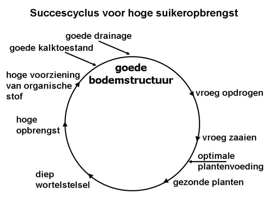 art Tijink - fig 1 - succescyclus