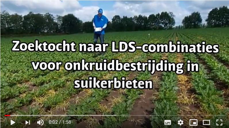 Video 'Zoektocht naar LDS-combinaties voor onkruidbestrijding in suikerbieten'